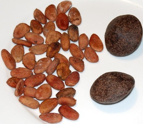 cocoa beans and chocolate balls